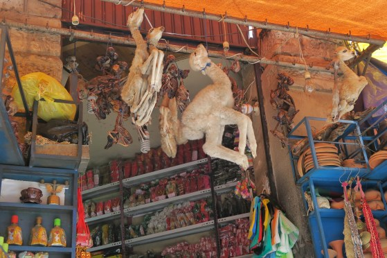 Animal fetuses used in different traditional ceremonies