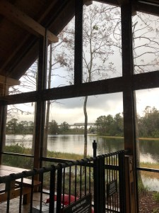 Cabins at Copper Creek - View of the Monorail