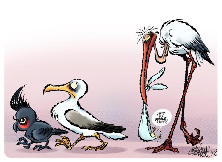 De aves - Calderón