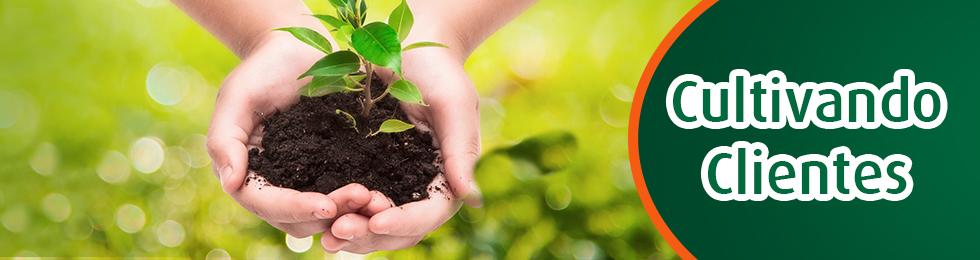 cultivando clientes