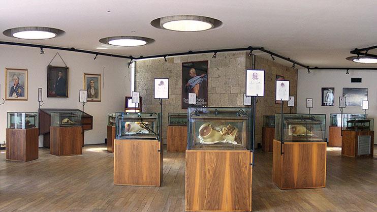 Risultati immagini per Museo delle Cere anatomiche di Clemente Susini