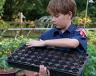 Cub Scout gardening