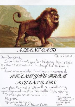 Aslan's Cats