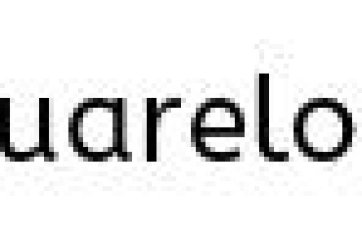 family friendly rain forest