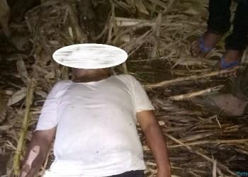 Jasad Safwan saat ditemukan di kebun. (ist)