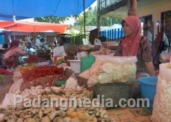 Aktifitas pedagang di Pasar Lubuk Basung. (fajar)