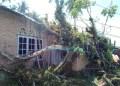 Pohon tumbang menimpa warga di Nagari Sungai Batang, Kab.Agam. (fajar)