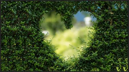 Memories Of You - Poem Image