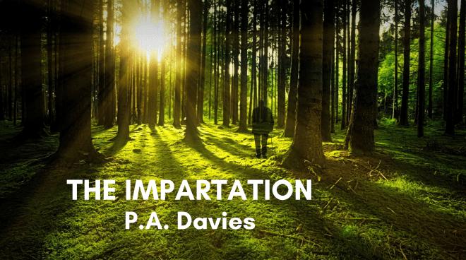 The Impartation Poem Image