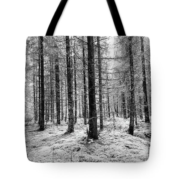 Black and white woods photograph tote bag