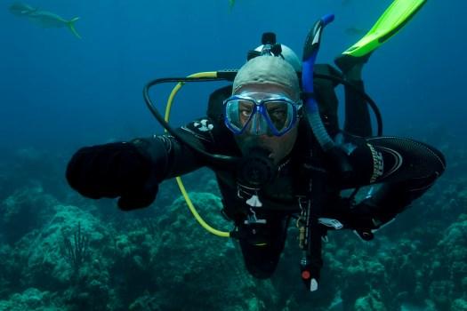 PADI Diver - Underwater - Hand Signals