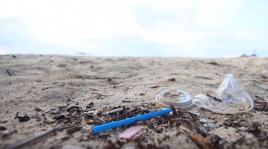 Ocean - Plastic - Marine Litter