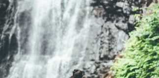 Las 10 cascadas más brutales de México