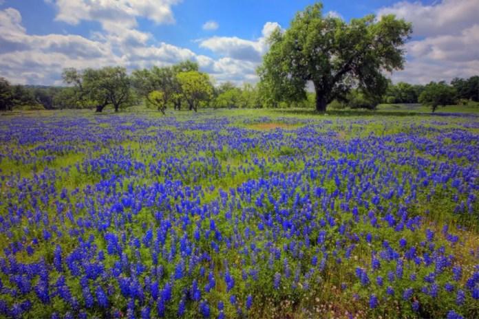 lugares mas bellos de texas