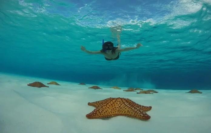Cómo llegas a Playa El Cielo Cozumel