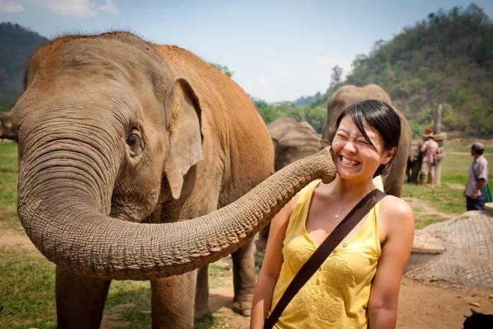 mejores excursiones en bangkok