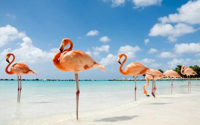 mejores destinos del caribe