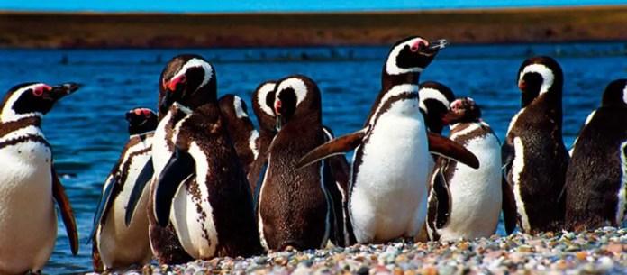 lugares que debes conocer en la patagonia