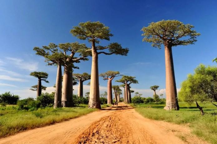 paisaje mas bonito de africa