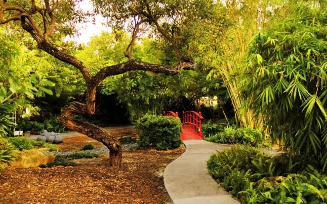 Parque botánico de Miami Beach