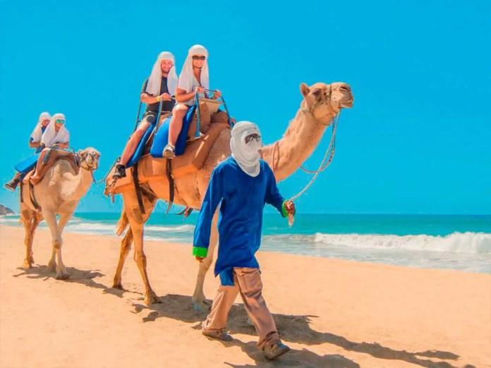 tour camellos en los cabos
