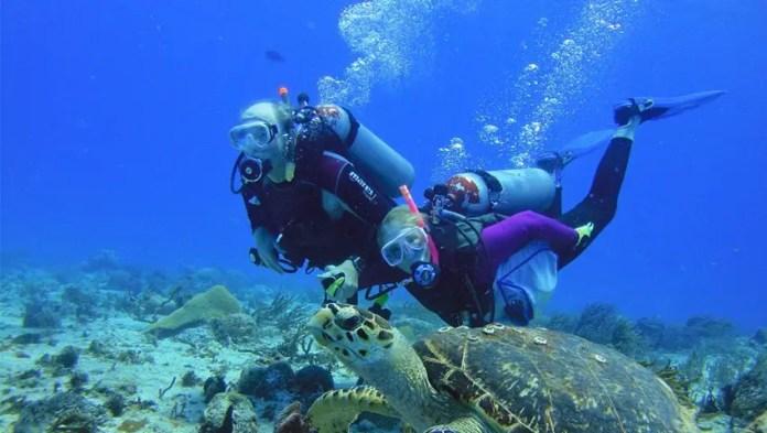 Lugares para hacer snorkel y buceo en Riviera Maya: Cozumel