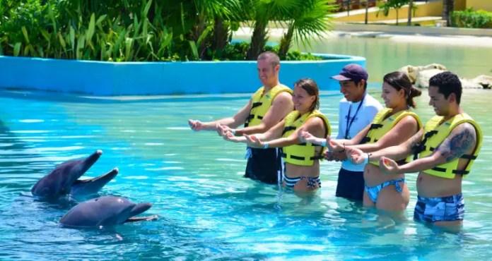 Nadar con delfines en Isla Mujeres