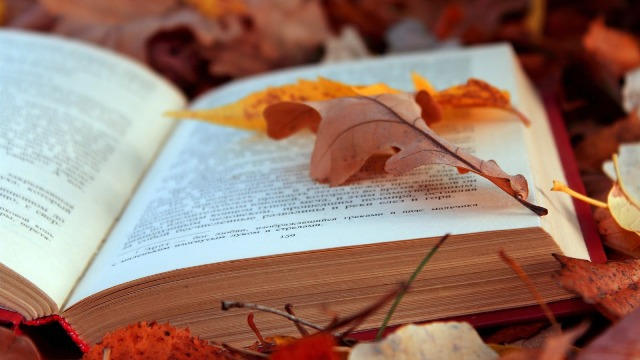 Autumn Leaves and Bible