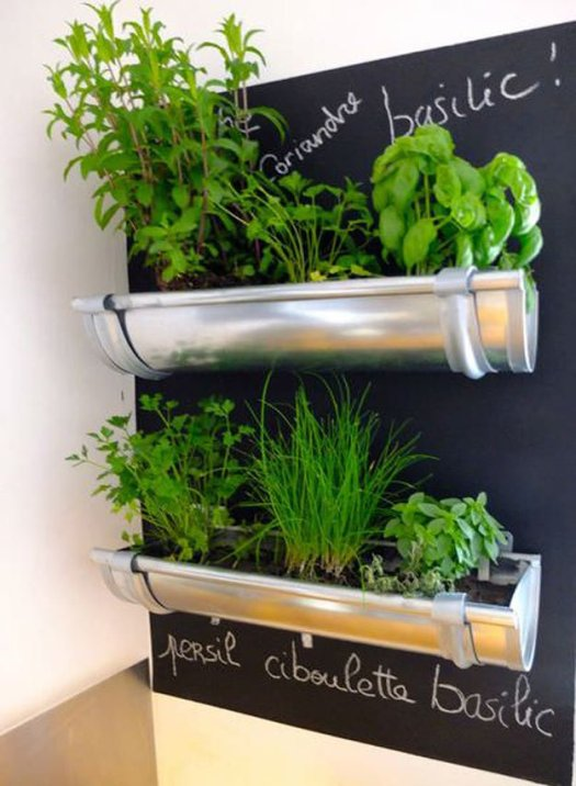 Gutter Indoor Herb Garden