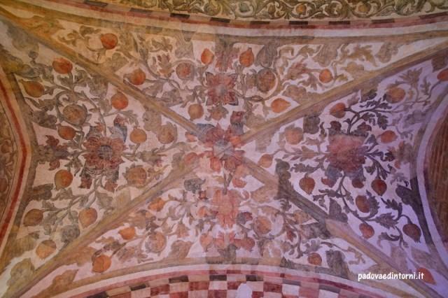 Palazzo della Ragione - vista soffitto esterno ©RobertaZago padovaedintorni.it
