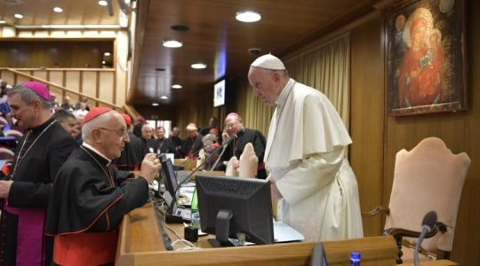 Rewolucyjne propozycje biskupów belgijskich w zakresie tematu powołań do kapłaństwa(Vatican Service News - 12.10.2018)