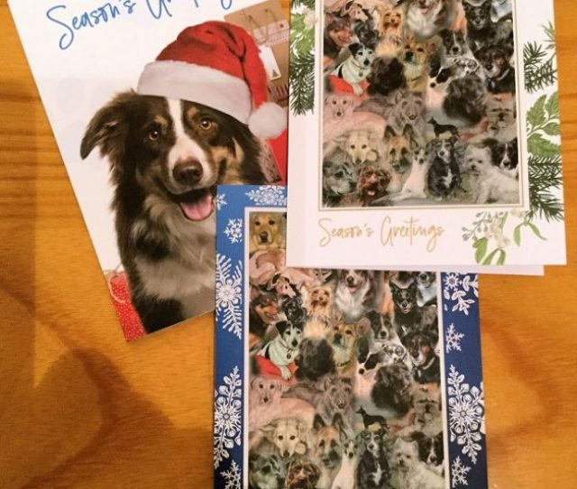 A K Bell Library Charity Christmas Card Sale