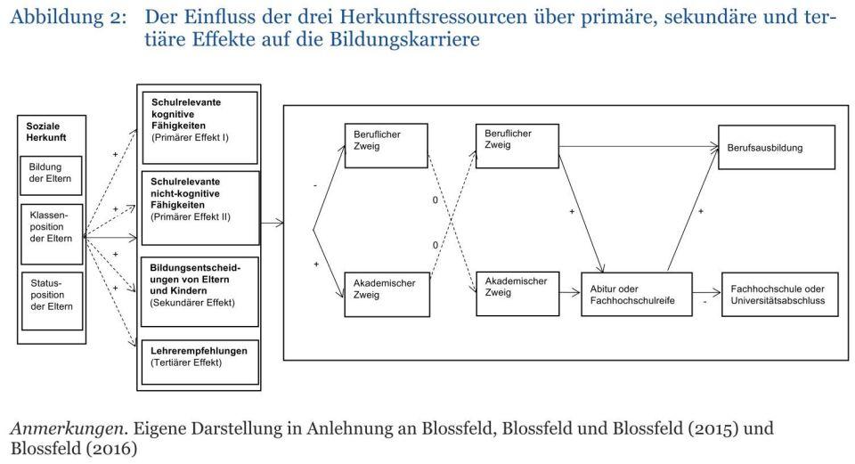 Blossfeld Abb2