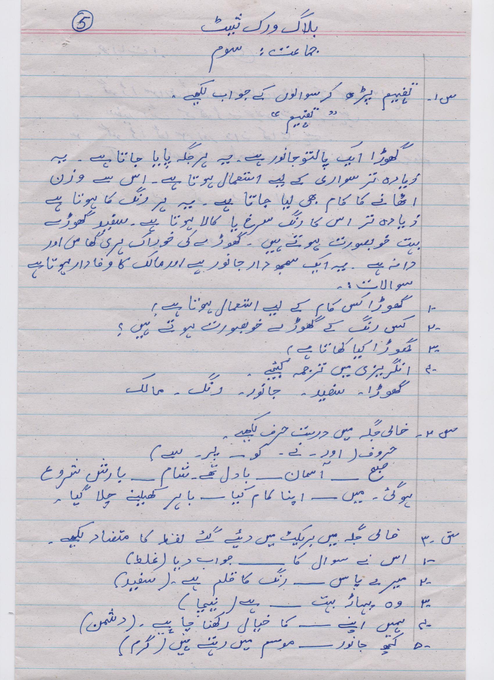 Urdu Blog Worksheet Class 3 5 Paf Juniors