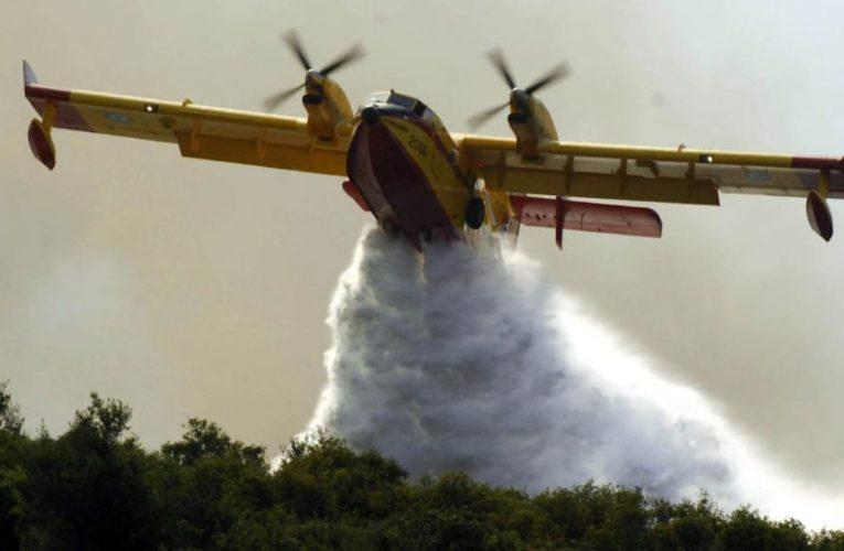 Υπό έλεγχο τέθηκε στις 8.00 το πρωί η μεγάλη πυρκαγιά που απείλησε το Δάσος Πάφου