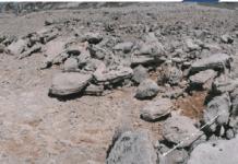 Περιοχή Ακάμα - Πάφος