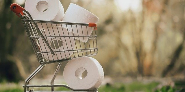shopping cart full of apparently giant rolls of toilet paper