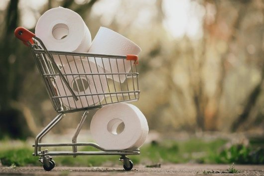Shopping cart full of (apparently) giant rolls of toilet paper