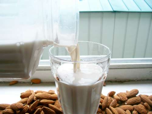 Almond milk is delicious.  Those almond calves are lucky little buggers.