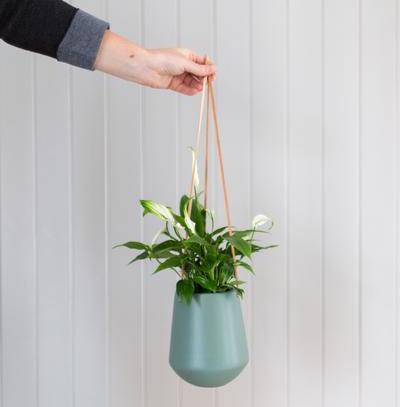 Trouva hanging planter