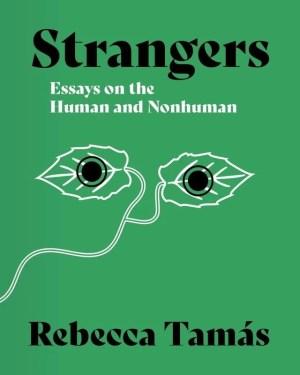 Strangers by Rebecca Tamás