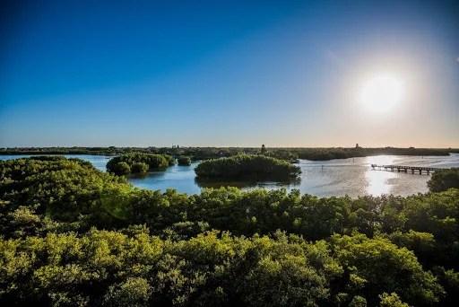 Spring Break Weedon Island Preserve