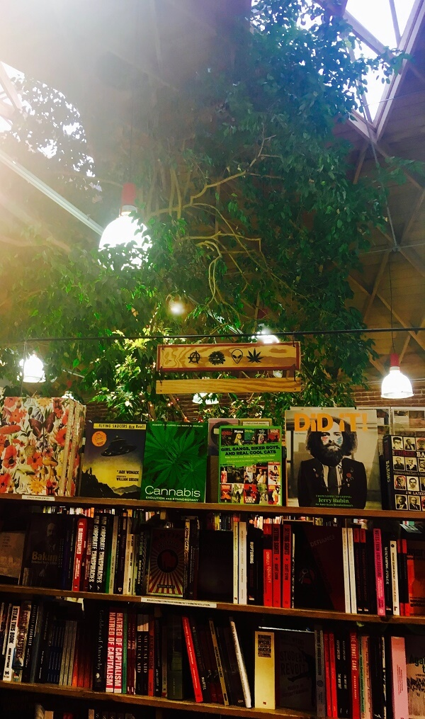 The Best Quirky Bookshops And Used Bookstores In Los