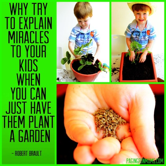 The Miracle happens very fast!