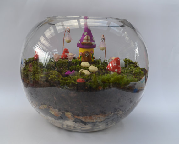 Don't have a place for a Fairy Garden outside? Why not make it inside! Love this idea!