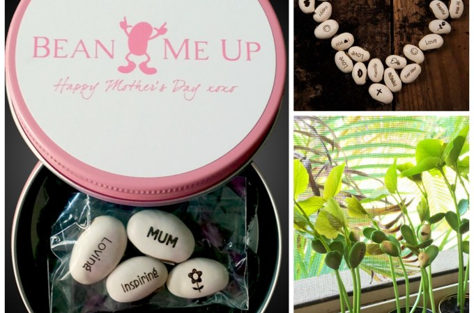 Bean Me Up – a fun and unique gift idea!