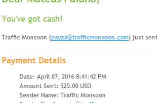 Pagamento Traffic Monsoon