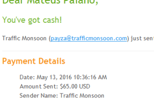 80º Pagamento Traffic Monsoon $65 15 Abril