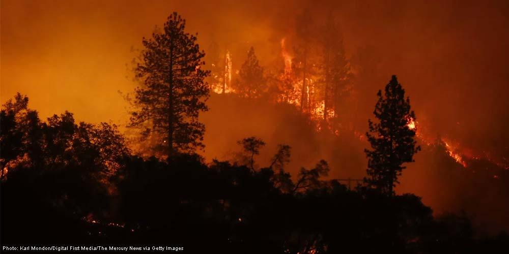 California Camp Fire