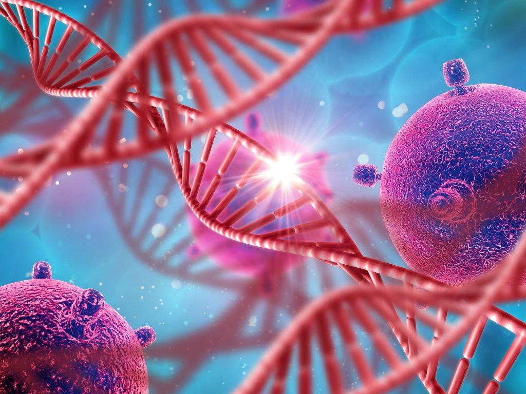regenerative medicine cord